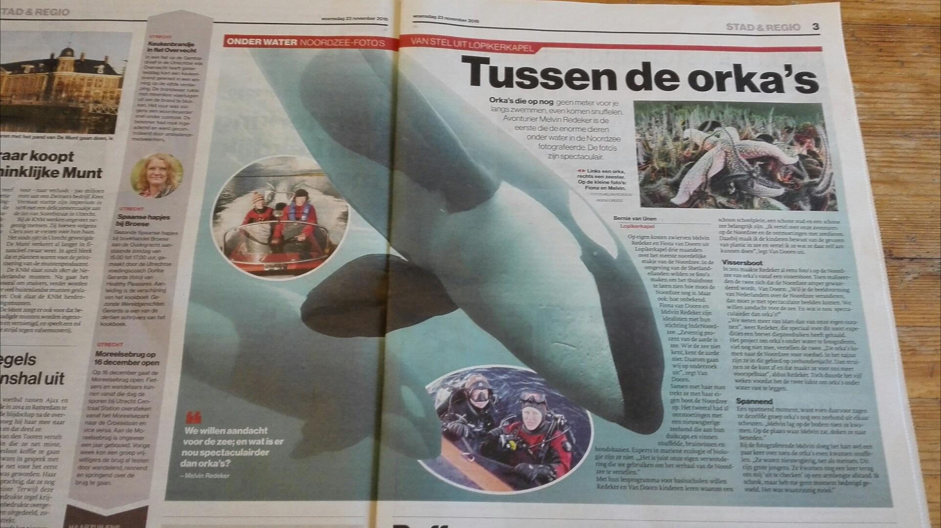 AD Regio Utrecht: Tussen de orka's