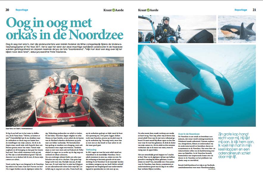 Krant van de Aarde: Oog in oog met orka's in de Noordzee